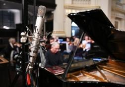 C12 piano mic